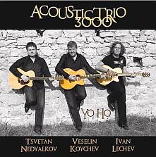 Acoustic Trio 3000