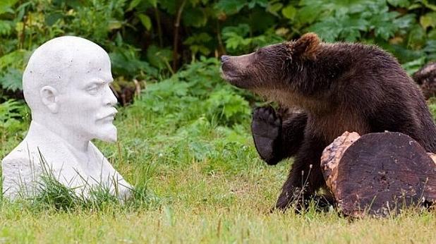 Ленин, мечка