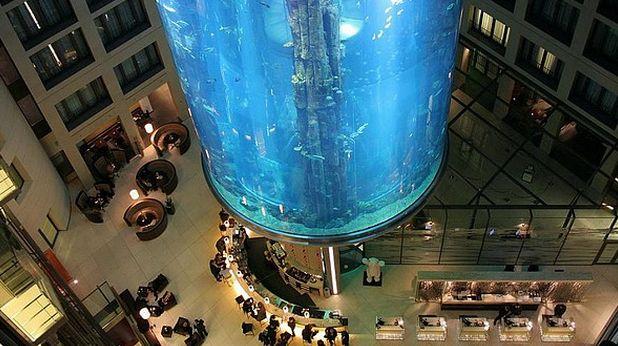 аквариум, берлин