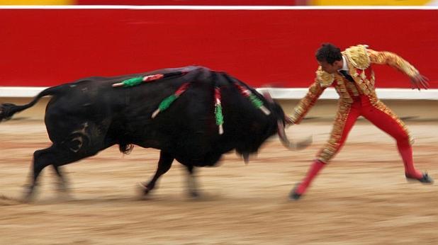 корида, бикове, испания