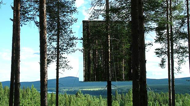 къща на дърво2