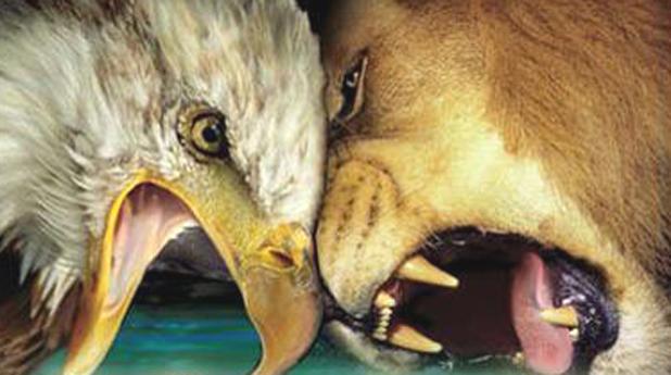 Орли срещу лъвове