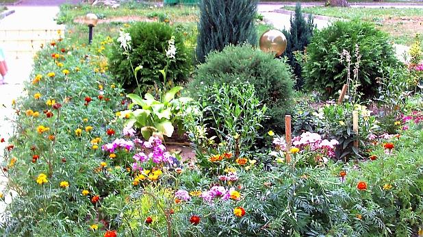 градинка, цветя