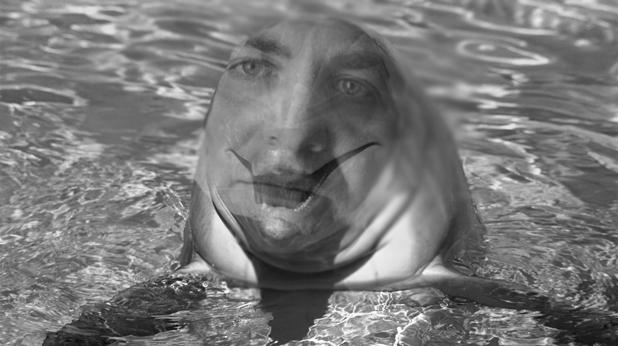 Мирослав Найденов, делфин