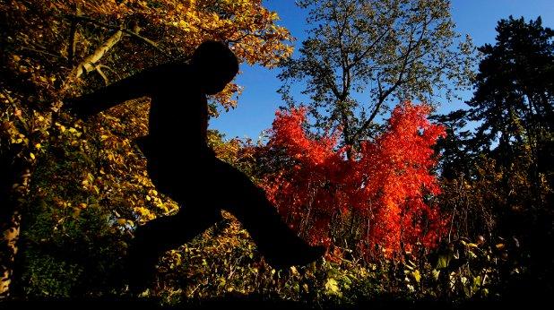 природа, есен
