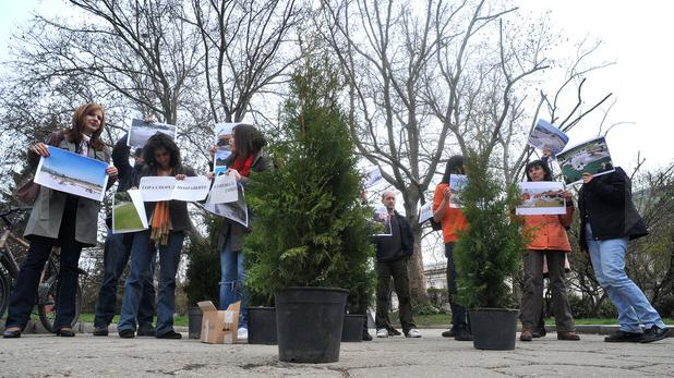 Да засадим гората върху жълтите павета, акция, закон за горите, коалиция За да остане природа в България, Зелените