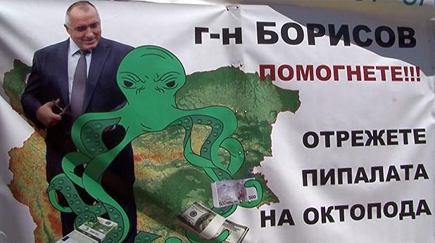 зелен октопод