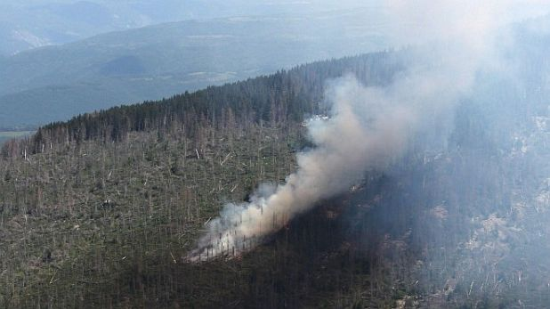 пожар, Витоша
