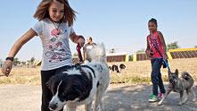 Дете с куче 221