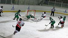 национален отбор по хокей за жени