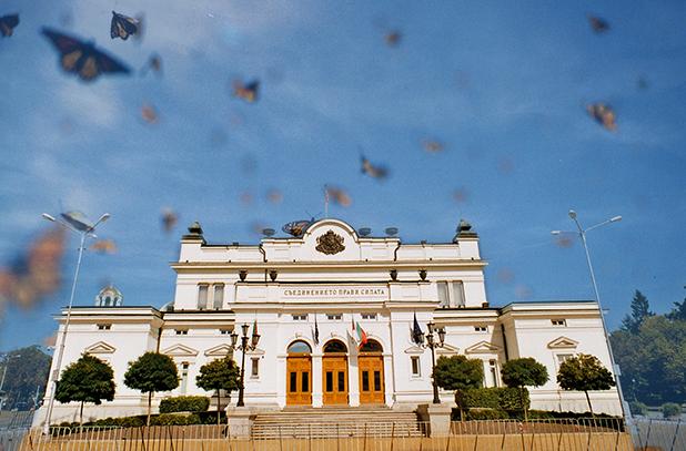пеперуди монарх в парламента