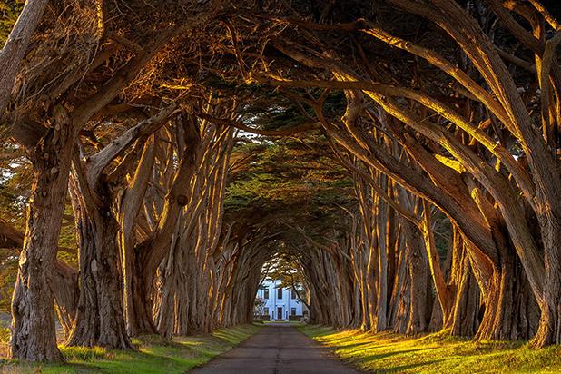 тунели