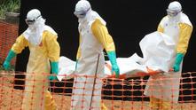 ебола 221