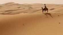 камила 21