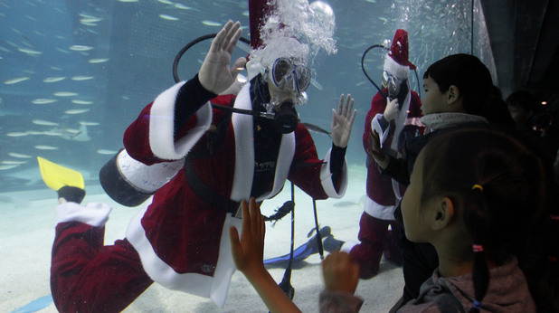 В Сеул водолозаи се облякоха като Дядо Коледа и заснеха подводна фотосесия