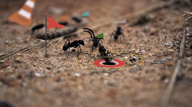 Животът на мравките като видеоигра