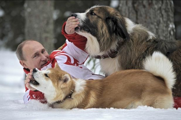 путин играе с кучетата си