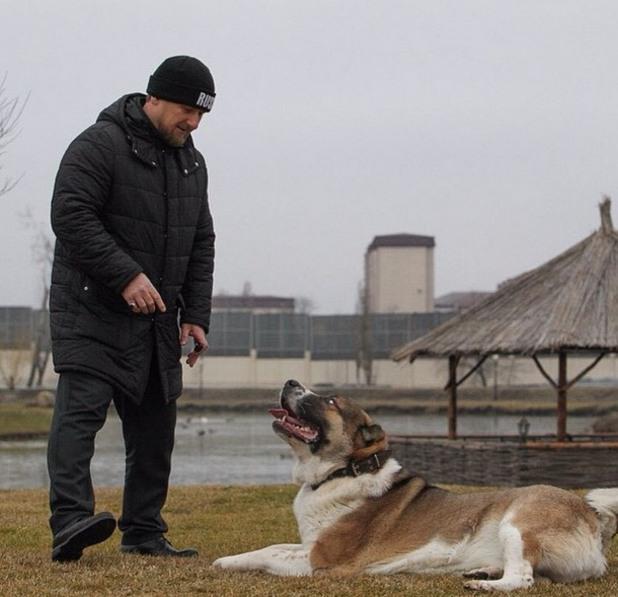 Рамзан Кадиев и кучето му Тарзан