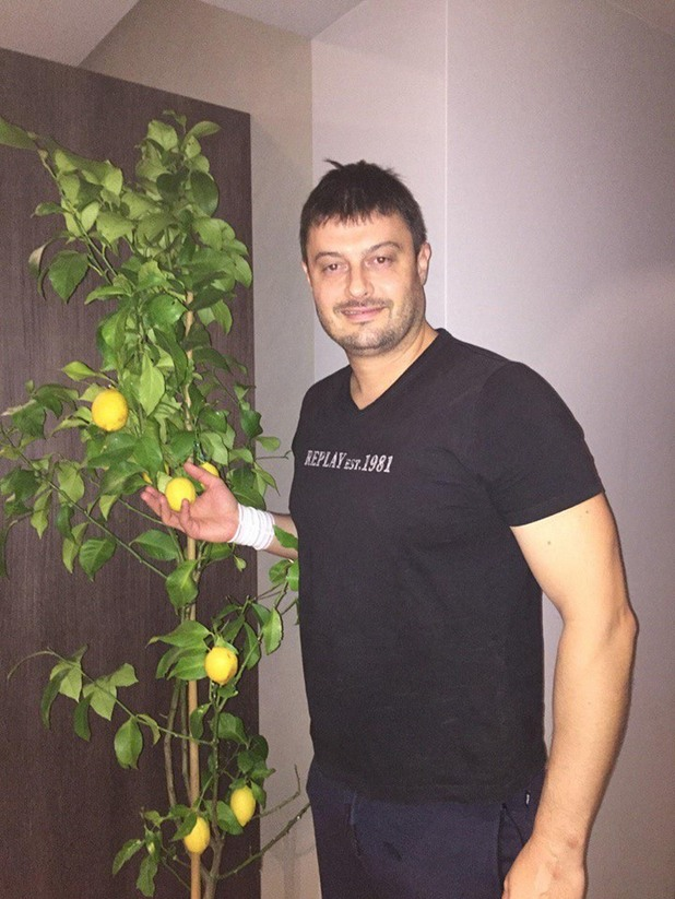 лимон, николай бареков