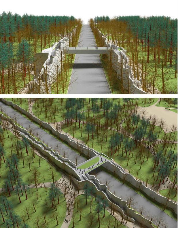 Проект 1, Никонсулт за преустройство на Борисова градина