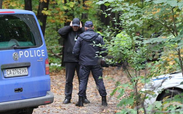Дърво премаза мъж в Борисовата градина