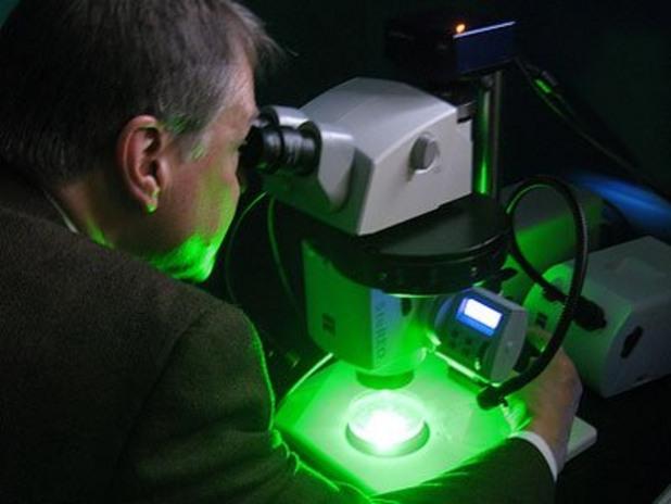микроскоп, работа с микроскоп, хистология