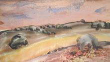 сава цоновски