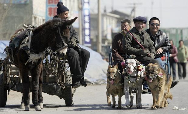 Чанчун, Китай