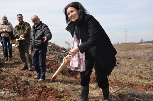 десислава танева, министър на земеделието
