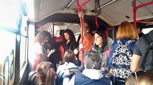 280, автобус, градски транспорт
