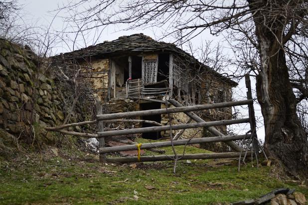 9 село любино