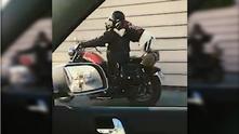 куче моторист