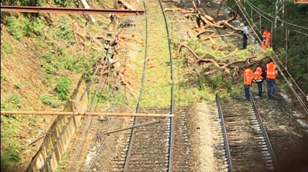 Влакова катастрофа