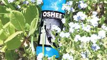 oshee1
