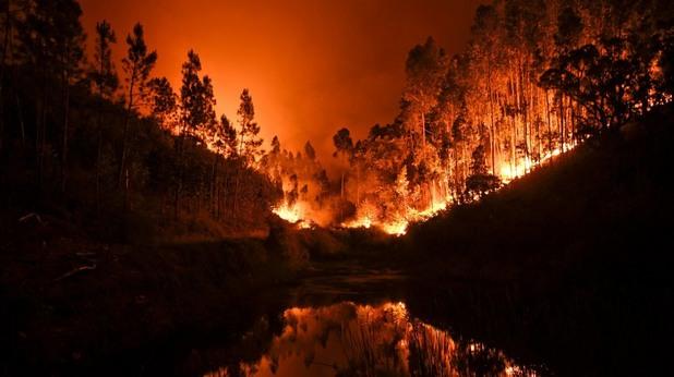 пожари, португалия, жертви, пламъци