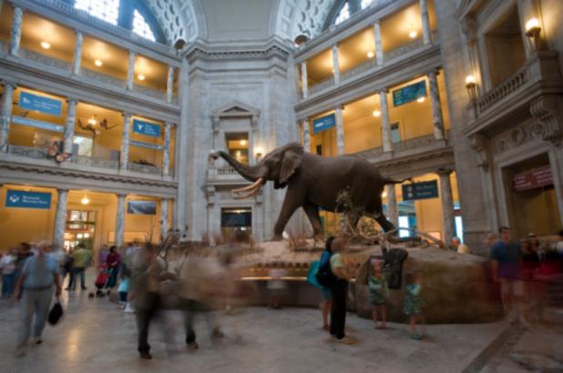 национален музей по естествена история лондон