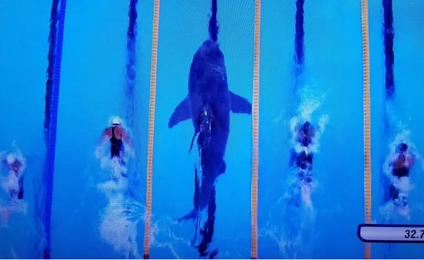 акула,майкъл фелпс