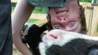 селфи с животни, селски туризъм