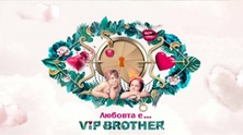vip-brother-2017