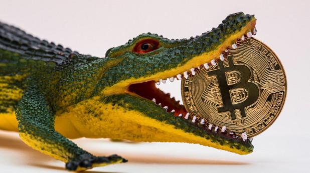биткойн, биткойни, криптовалута