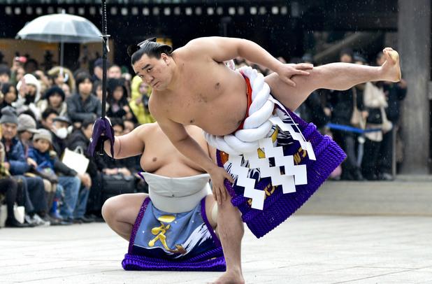 Харумафуджи