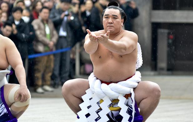 сумо,харумафуджи