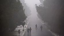 smog-0112