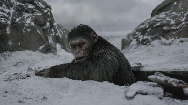 War for the Planet of the Apes, планетата на маймуните