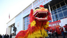 китайска нова година, жълто земно куче