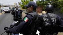полиция в мексико