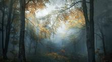 """""""Ранна есен"""""""