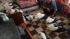Семейство спасява премръзнали щъркели