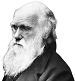 """Наградите """"Дарвин"""""""
