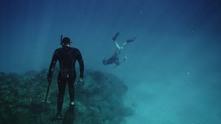 коралов риф